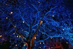?rvore de Natal imagem de stock