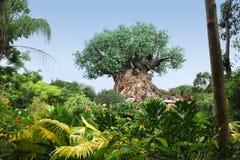 A árvore de vida no mundo de Disney Imagem de Stock