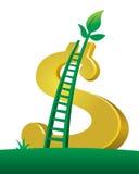 Árvore do dólar da escada da economia Foto de Stock