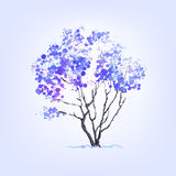Árvore do inverno das manchas Fotos de Stock Royalty Free