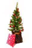 ?rvore do Natal e do ano novo, coto Fotografia de Stock
