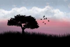 Árvore e pássaros mostrados em silhueta Fotografia de Stock Royalty Free