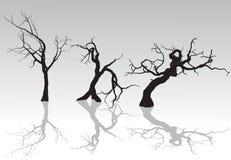 Árvores assustadores do inverno Fotos de Stock Royalty Free