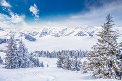 Árvores cobertas pela neve fresca em cumes de Tyrolian da estância de esqui de Kitzbuhel, Áustria Imagem de Stock