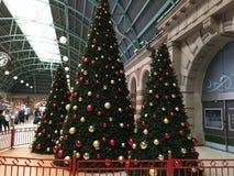 ?rvores de Natal fotografia de stock