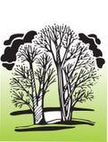 Árvores do vetor Fotos de Stock