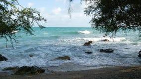 ?rvores e mar bonito Mar azul majestoso que rippling atr?s das ?rvores de Ko Phangan no dia ensolarado em Tail?ndia exotic filme