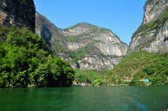 Árvores pequenas de Yangtze Three Gorges na queda Fotografia de Stock Royalty Free