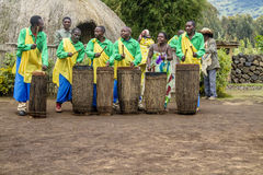 Rwanda drummers. MUSANZE, RWANDA - Tribal Dancers of the Batwa Tribe Perform Traditional Intore Dance to Celebrate the Birth of an Endangered Mountain Gorilla in Stock Photo