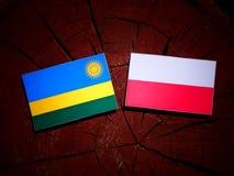 Rwanda flag with Polish flag on a tree stump isolated. Rwanda flag with Polish flag on a tree stump vector illustration