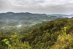 Rwanda rainforests. The sky and the mountains accompany with rainforests Royalty Free Stock Image