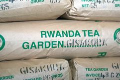 Rwanda tea Royalty Free Stock Photos