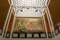 Rwandese koffie stock afbeeldingen