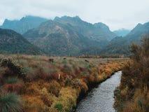 Rwenzori mountains stock images