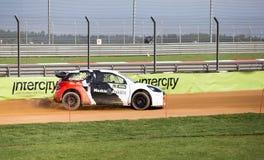 RX-Weltsammlungs-Kreuz-Auto Stockfotografie
