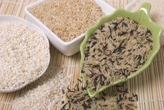 ryż zdjęcia stock