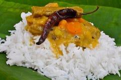 ryż sambhar zdjęcie stock