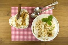 Ryżowy pudding zdjęcia stock