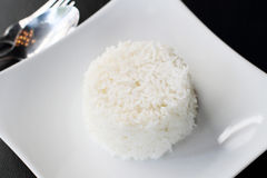 ryżu strumień Fotografia Stock