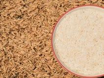 ryżu zbożowy bown Fotografia Royalty Free