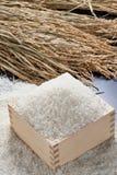 ryż zdjęcie stock