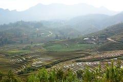 Ryżowi pola Sa Pa Wietnam Zdjęcie Stock