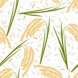 Ryżowy bezszwowy wzór Obrazy Stock