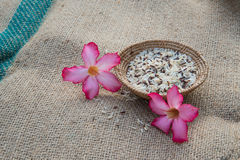Ryżowy kosz Fotografia Stock