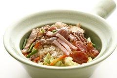 ryżowy rico Fotografia Stock