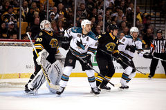 Ryan Clowe screens Bruins Tim Thomas. Stock Image