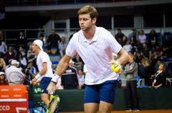 Ryan Harrison som spelar i matchen mot SERBIEN, Davis Cup 2018, Nis, Royaltyfri Foto