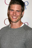 Ryan McPartlin Royalty Free Stock Image
