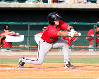Ryan Plourde, Kannapolis Intimidators Royalty Free Stock Photo