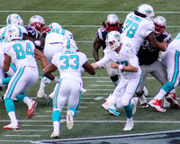 Ryan Tannehill hands off to Daniel Thomas. Stock Images