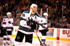 Ryane Clowe San Jose Sharks Royalty Free Stock Photography