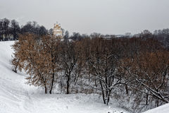 Ryazan Kremlin, winter Royalty Free Stock Images