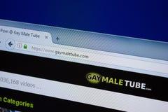 Ryazan, Rusland - September 09, 2018: Homepage van Vrolijke Mannelijke Buiswebsite op de vertoning van PC, url - GayMaleTube com royalty-vrije stock fotografie