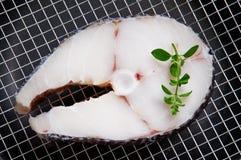 ryba Zdjęcie Stock