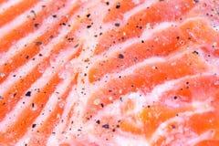 ryba obrazy stock