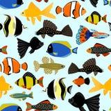 ryba deseniują bezszwowego Śliczny kreskówki akwarium ryba zwierząt tło dla dzieciaka wektorowego ilustracyjnego druku ilustracji