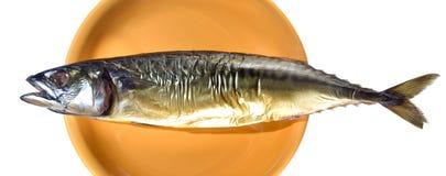 ryba dymił Obrazy Royalty Free