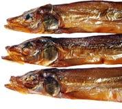 ryba dymił Zdjęcie Royalty Free