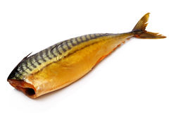 ryba dymiąca Fotografia Stock