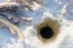 Ryba i prącie na lodzie blisko do dziury podczas gdy zima połów Zdjęcia Stock