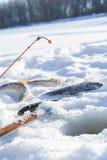 Ryba i prącie na lodzie blisko do dziury podczas gdy zima połów Obraz Stock