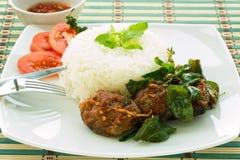 Ryba i ryż Obrazy Stock