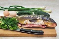 Ryba i składniki dla jej przygotowania: warzywa, pikantność, oni Fotografia Stock