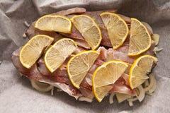 Ryba na pergaminie Obrazy Stock