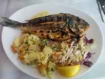 Ryba na talerzu Zdjęcie Royalty Free