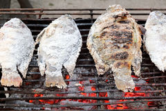 Ryba na węgla drzewnego grillu Fotografia Stock